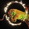 Цирки в Краснокамске