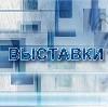 Выставки в Краснокамске