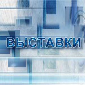 Выставки Краснокамска